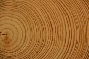 wood-178223_640