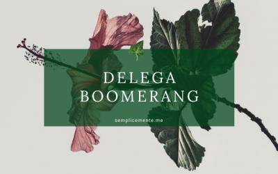 Delega Boomerang